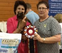 This is our beautiful Dusky Rose after being declared Supreme Pedigree Exhibit at the inaugural NSW CFA Inc State Show in April, 2012.  To say we were proud, is an understatement.  She was also supreme exhibit at Kempsey Kat Show, and Supreme ring exhibit at Bathurst Show.